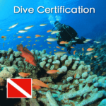 playa-del-carmen-dive-certification