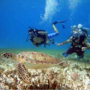 scuba-diving-lessons-cancun