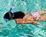 snorkel-tour-from-tulum