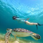 Underwater photo of young woman snorkeling and swimming with Haw
